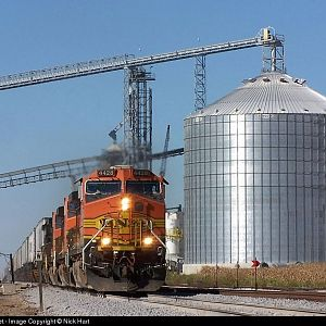 BNSF 4428 at Ransom, Illinois on October 1st, 2006