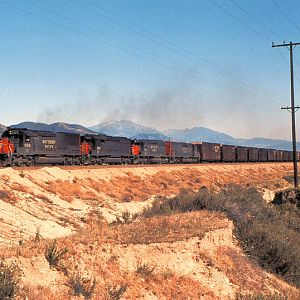 Southern Pacific On The Cutoff