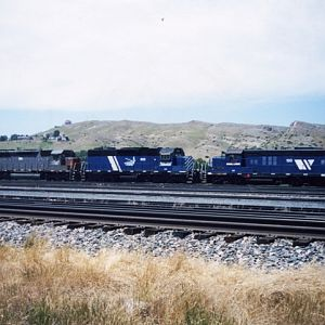 MRL locos abound @ Livingston