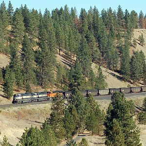 Marshall Canyon Hi Line