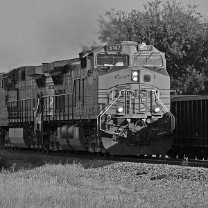 IMG_0729_BNSF_rolling_down_the_line_Killeen_Texas