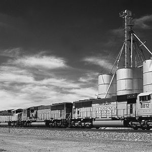 BNSF Coal Drag In Contrast
