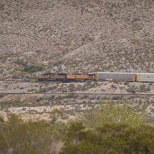 UP 2356 and UP 9509 pull towards El Paso
