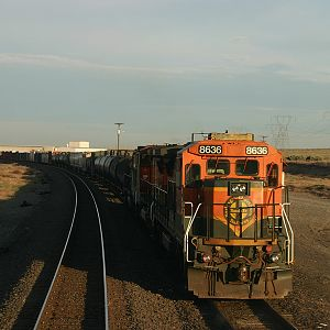 BNSF at Plymouth, WA