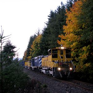 Weyerhaeuser Extra - Fall Colors