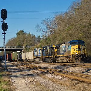 CSX Single Digit