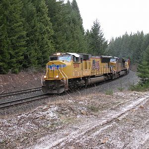 UP 5099 at McCredie Springs
