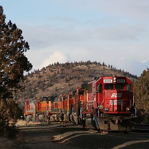 Rare Soo Line visitor to Central Oregon