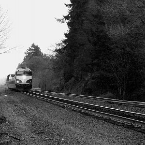 Amtrak Cascades racing north at Kalama, Washington.