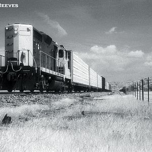 Sierra Railroad foothills