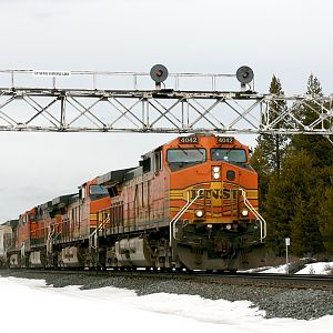 SB BNSF on UP at Diamond Lake, OR