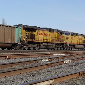 UP coal train on BNSF.