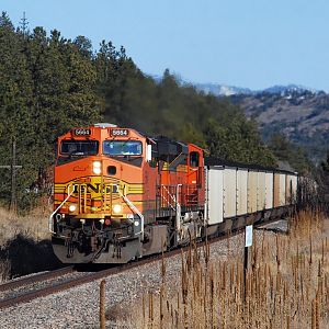 DSC_0032_BNSF_COAL_SOUTHBOUND_COLORADO_SPRINGS