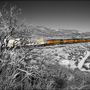 Brunt Bush and Train Heading up Track 2, Selective Color