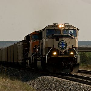 BNSF_9685_Loaded_Coal
