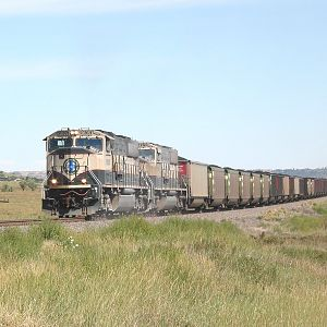 Colorado Joint Line Train