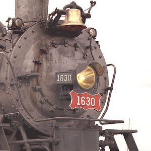 IRM Frisco Decapod