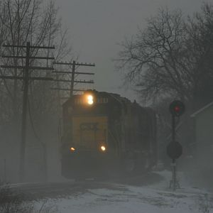 8369 in the fog