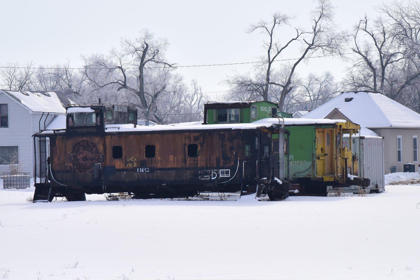 Cabeese in Snow_010121.JPG