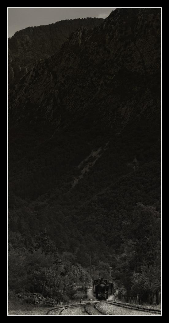 frda12205.jpg