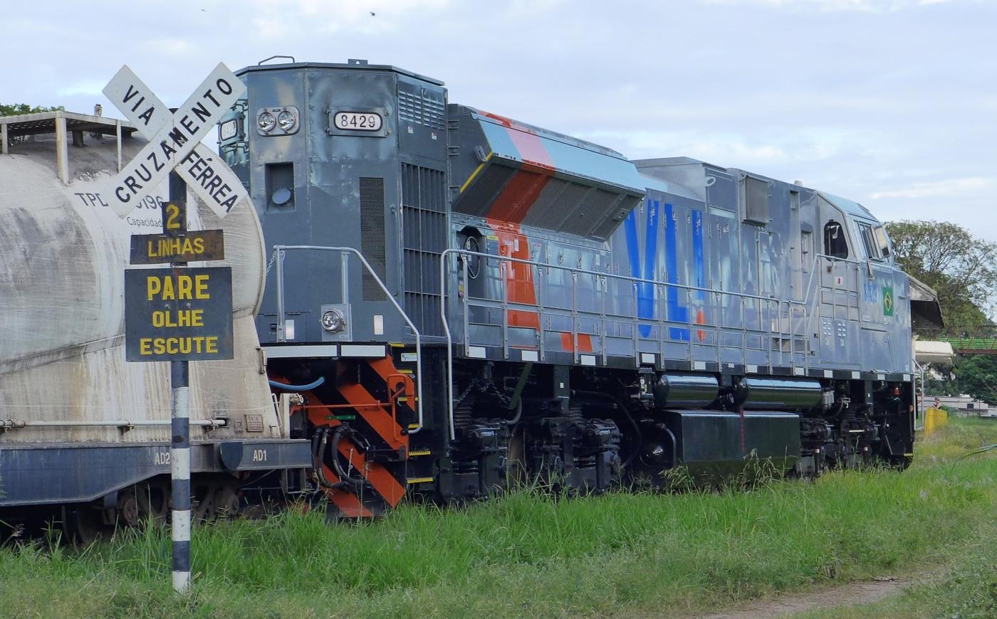 P2510013.JPG