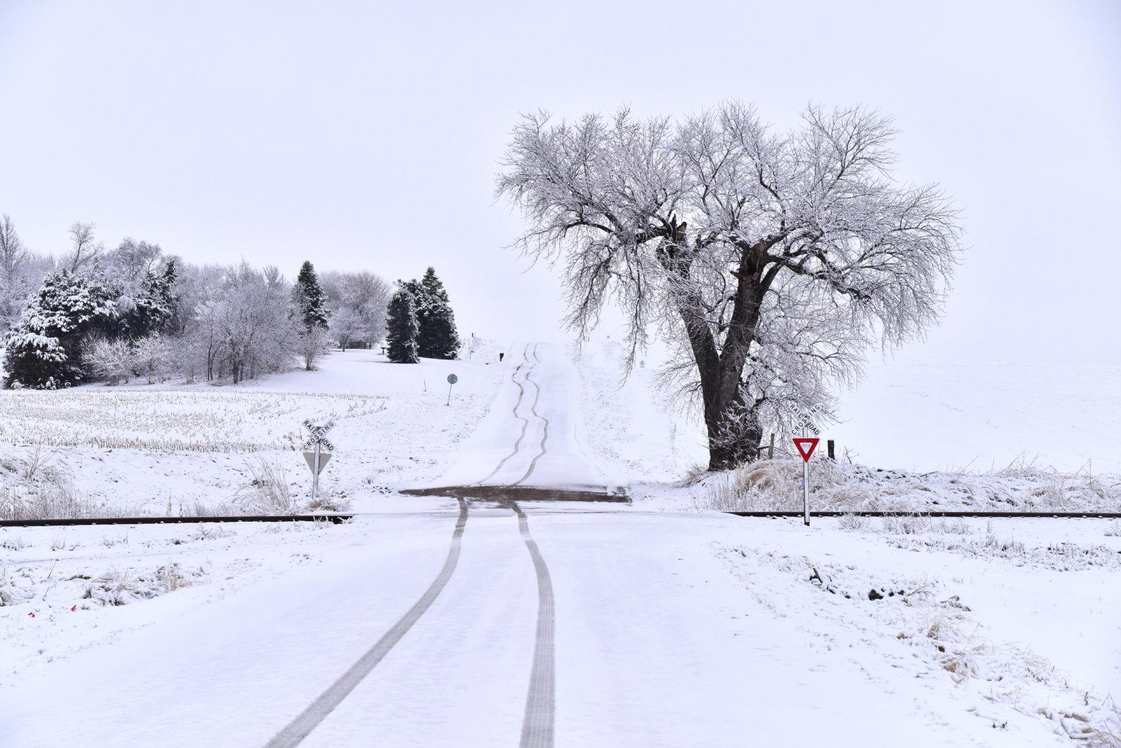The road I drove_031420.JPG
