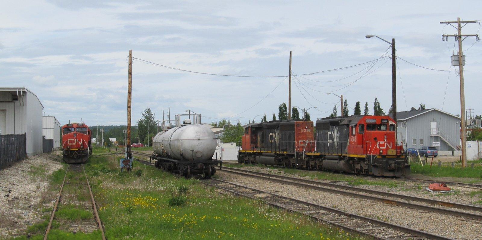 Yard_06-08-2020 (1).jpg
